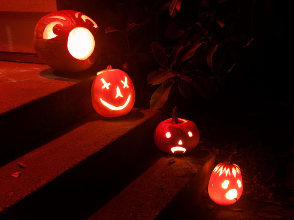 Pumpkin Pogrom 2013