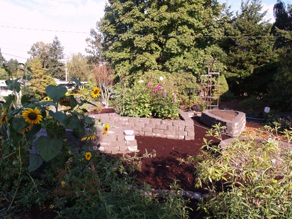 Northeast Across The Raised Beds