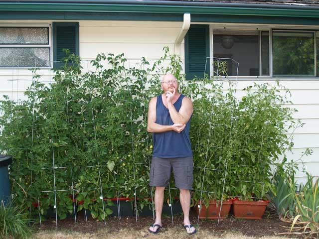 andrew-tomatoes.jpg