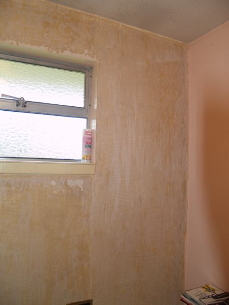 Bathroom Wall Without Paper