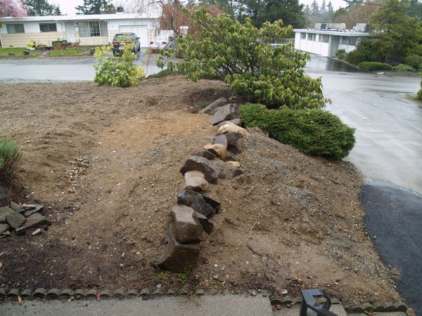 Front Yard and Rockery