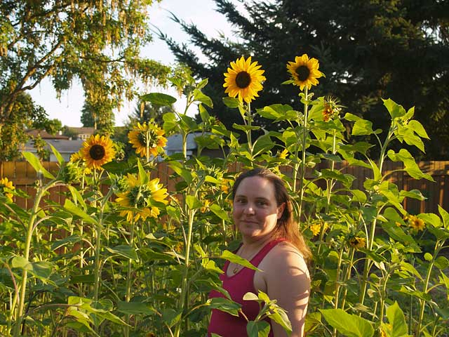 margaret-sunflowers.jpg