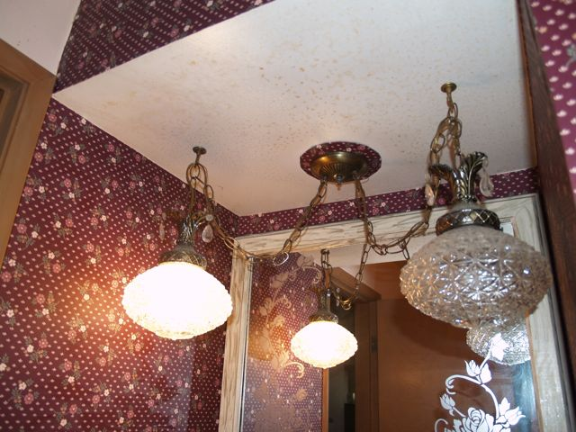 Ugly Bathroom Light Fixture